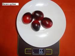 Индиго рубин 30.08 вес_.jpg