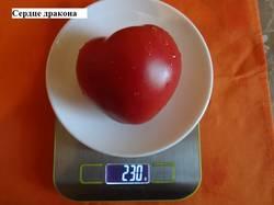 Сердце дракона 16.09 вес.jpg_.jpg