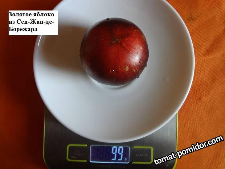 Золотое яблоко из Сен-Жан-де-Борежара 26.09 вес_.jpg