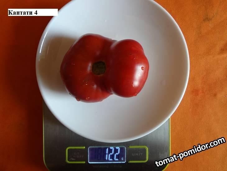 Кантати 4 _ 26.09 вес_.jpg