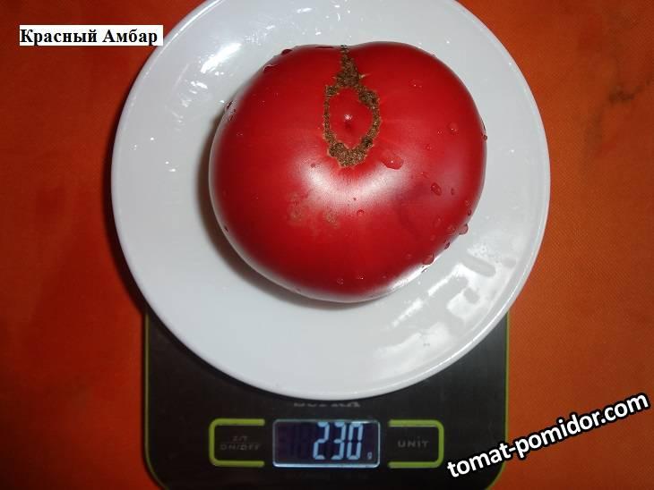Красный амбар 28.09 вес_.jpg