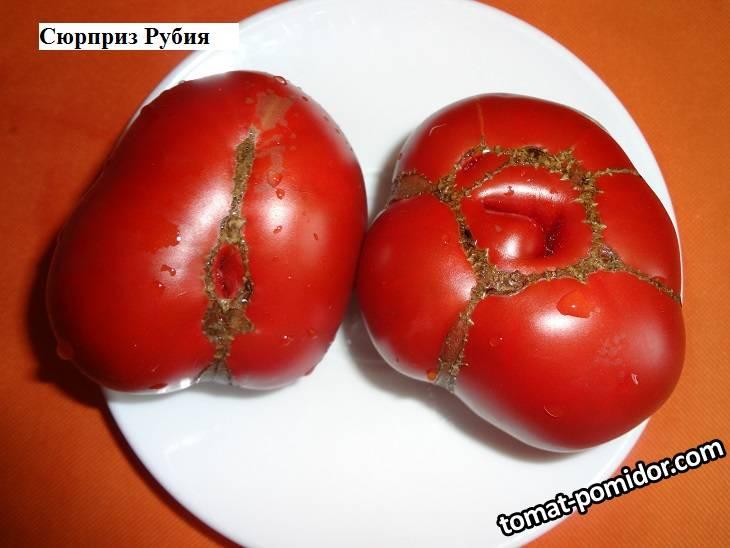 томаты 2020 г. ч. 8