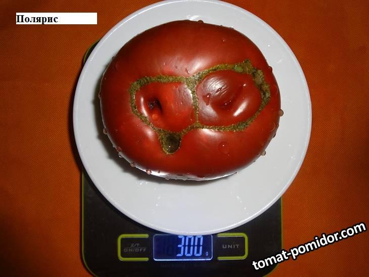 Полярис 29.09 вес_.jpg