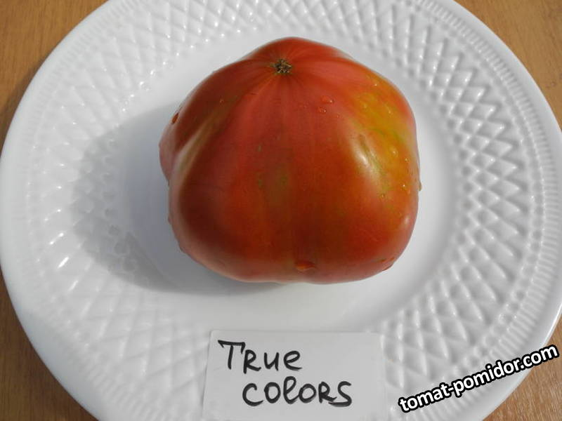 Истинные цвета (True Colors).JPG