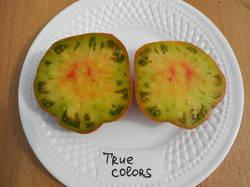 Истинные цвета (True Colors) 2.JPG