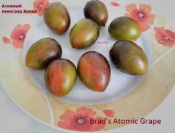 атомн.гроздь брэда.JPG