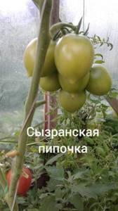 Polish_20200725_133044041.jpg