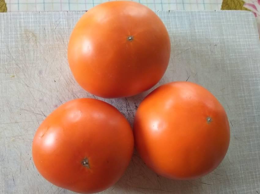 томат Летний абрикос.jpg