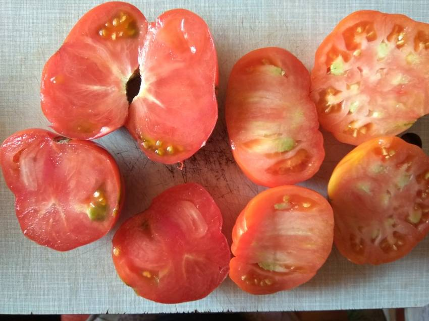 томат Томато_р.jpg