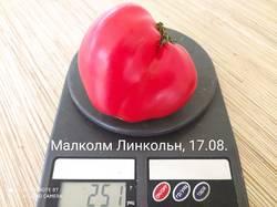 IMG_20200817_114416.jpg