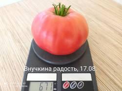IMG_20200817_114450.jpg