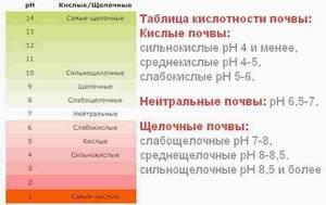 1184099079_.thumb.jpg.4ddf422f1ef749aa1034cd4006b78a01.jpg