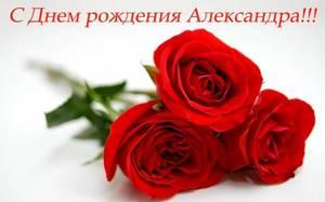 Александра.jpg