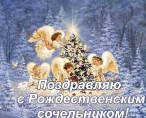 Cochelnik.thumb.jpg.8819a7108520db4fc997e615769e363a.jpg