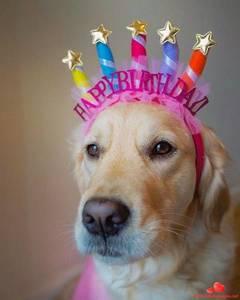 Happy-Birthday-Whatsapp-Images-815.thumb.jpg.385725caaa4864f698c6a0f6751b2c9a.jpg