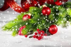 depositphotos_36377547-stock-photo-christmas-balls-on-fir-tree.thumb.jpg.5d857e580b9ba6aa8bb74cfe8782602d.jpg
