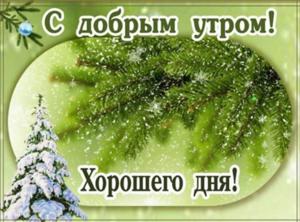 image.thumb.png.529ce698e5340cbb2c0e8fbf28ea1a4a.png