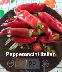 Pepperoncini italian11.08.jpg