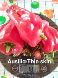 Ausilio Thin skin, Италия.jpg