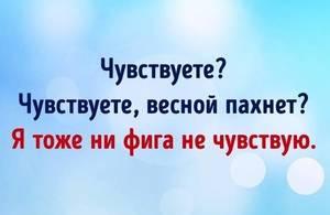 12_n.thumb.jpg.fc6131d70469c0234135eb474d881265.jpg