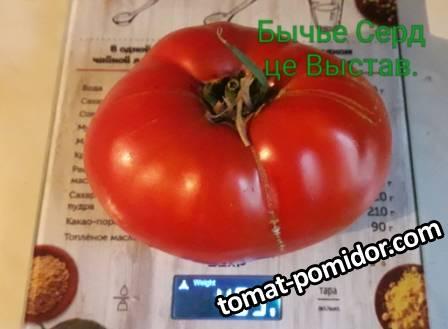 Розовые, Красные, Малиновые томаты