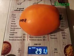 Жёлтые, Оранжевые томаты