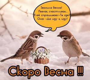 soon_spring_1.jpg