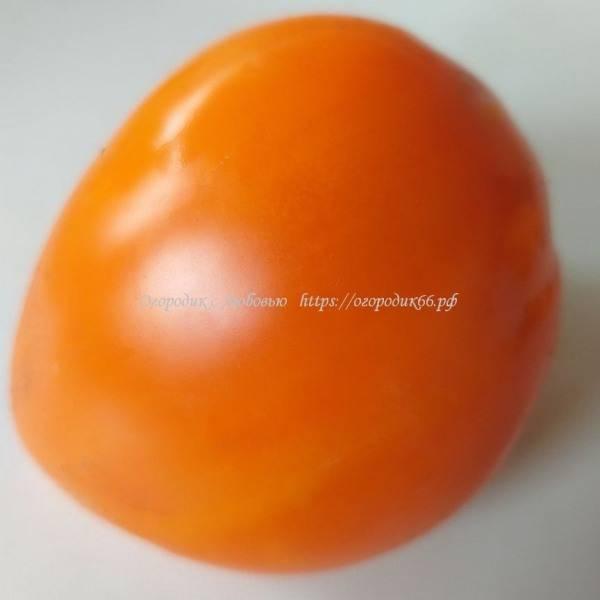 Оранжевая клубника  серцевидная (Orange Strawberry)
