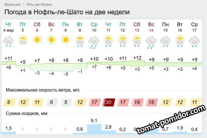 Прогноз погоды на две недели (4 марта 2021)