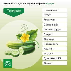 pouy.thumb.jpg.90ab79b390b3bd62722959657bf830a1.jpg