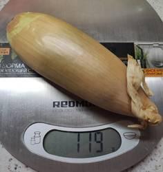 Шалот Банановый гигант