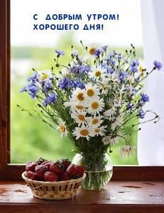 dobrogoutra_ru_7164.jpg