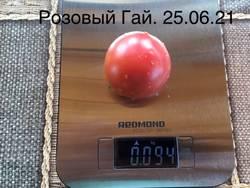 Розовый Гай. 25 июня. Семена от Ирины Передня (Pirina). Высота куста в ОГ 80 см.
