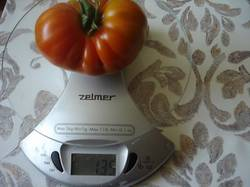 DSC00364.JPG Июньский красный вес 135 гр. 14 июня