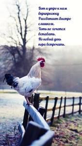 dobrogoutra_ru_5507.thumb.jpg.233d1317797524ab1107b70e819e2f40.jpg