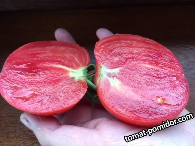 Не Блаш розово-красный срезы.JPG