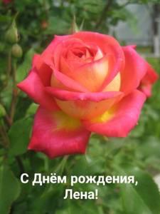 upload_2021_07_27_05_00_56_979.thumb.jpg.9f9f08ee2c915ac0c4956c5e91725797.jpg