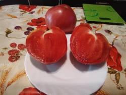 Сердце Валентина
