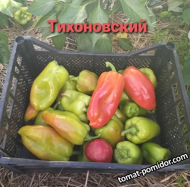 Тихоновский1.jpg