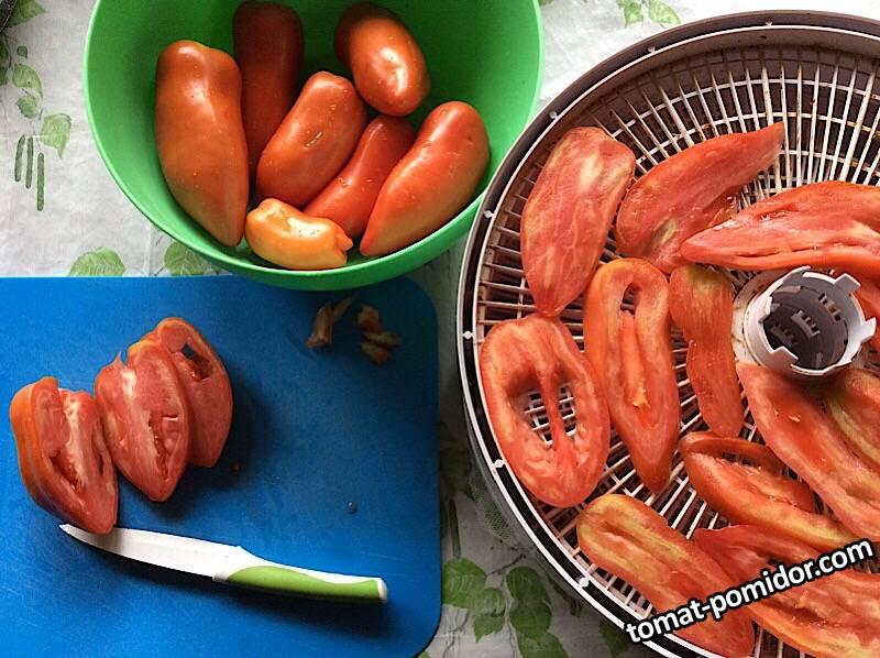 Сушка томатов Корнабель