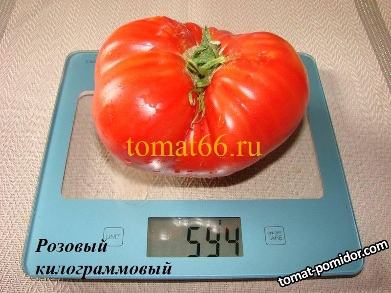 Розовый килограммовый (1).JPG