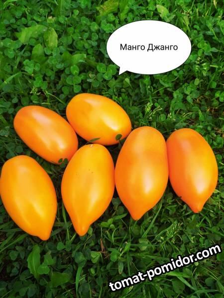 Манго-Джанго