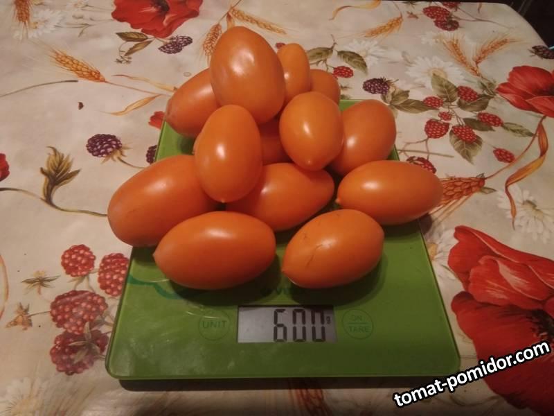 Оранжевый капризе