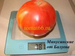 Минусинские от Балуева (1).JPG