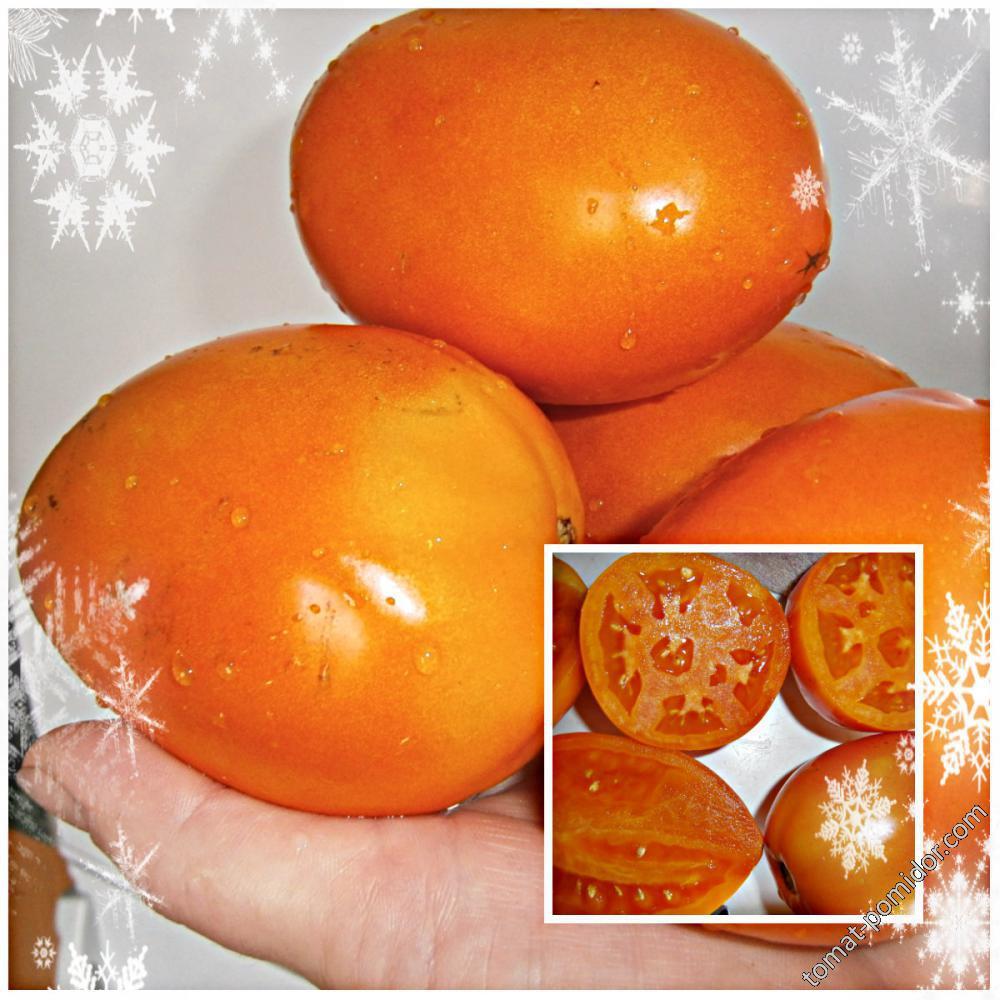 Неопознанная оранжевая крупная слива