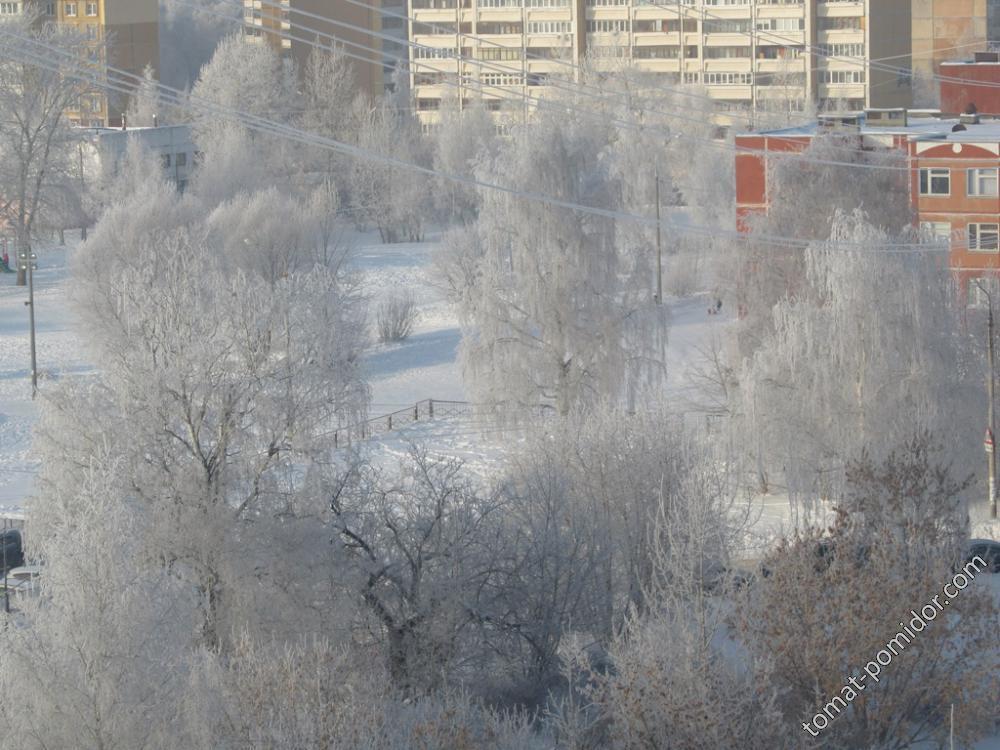 2016 Зимняя меланхолия
