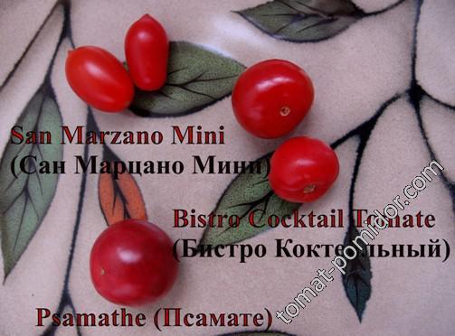 San Marzano Mini, Bistro Cocktail Tomate, Psamathe