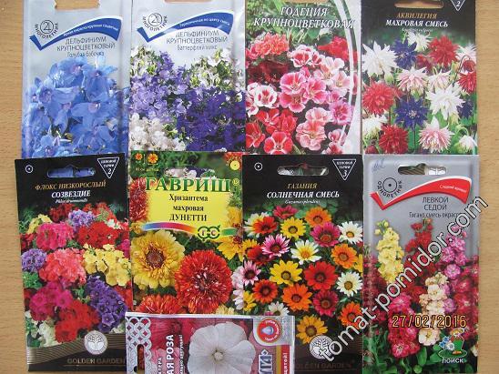 семена цветов для мартовского посева