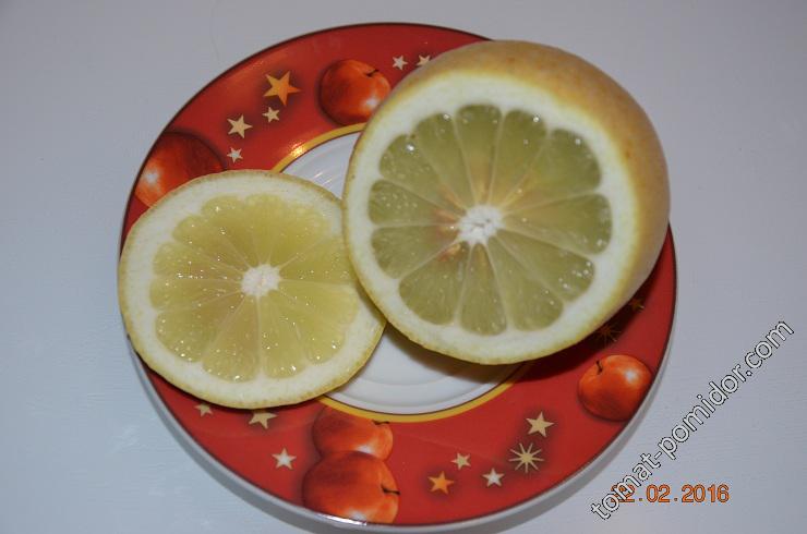 Лимончик поспел