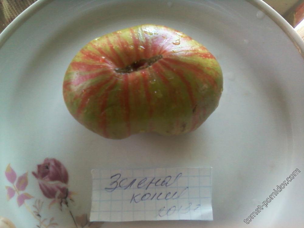 Зелёная копия 2013.